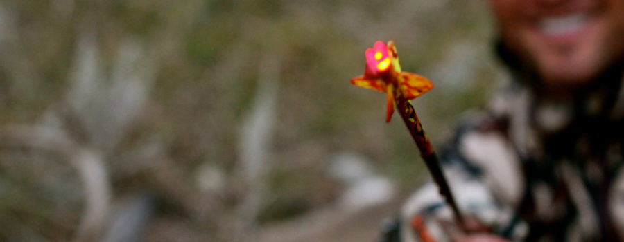 "FILM:  ZAC GRIFFITH'S SOUTH DAKOTA MULE DEER HUNT:  ""Trick or Treat"""