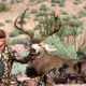 "ZAC GRIFFITH ARIZONA ARCHERY DESERT MULE DEER HUNT:  ""Sixty Days"""
