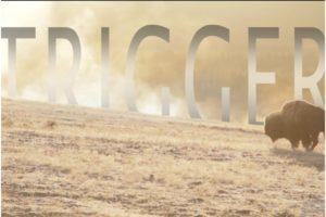 "TOP 5 LUKE SURMA:  ""TRIGGER"""