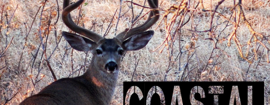 "ZAC GRIFFITH: ""COASTAL: A NorCal Blacktail Story"""