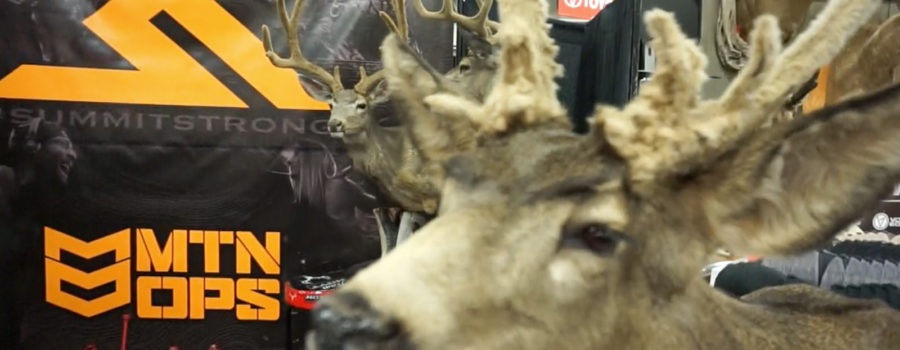 WESTERN HUNTING EXPO DAY 1