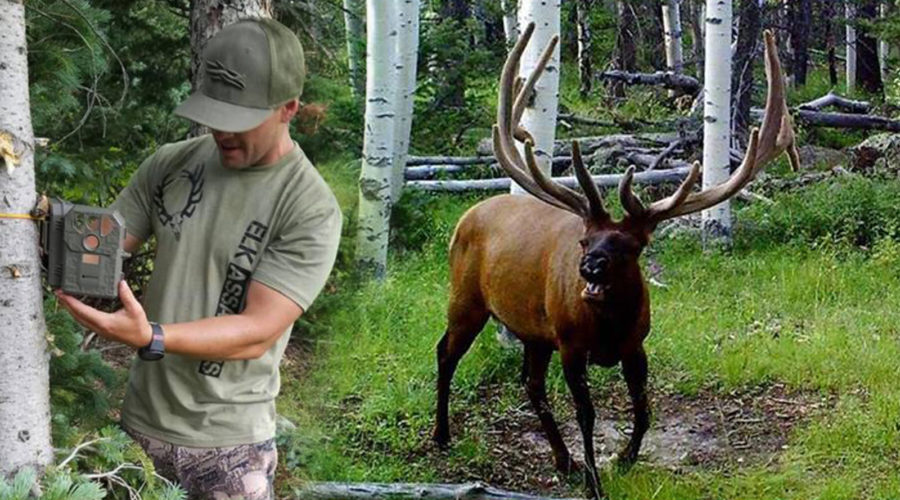 TRAIL CAMS 101 WITH RYAN CARTER