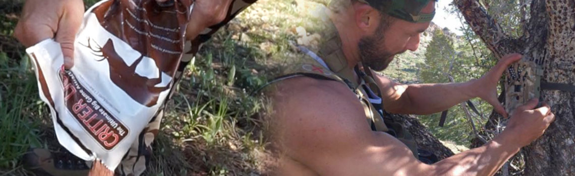 CRITTER LICK and TRAIL CAM SET UP FOR MULE DEER