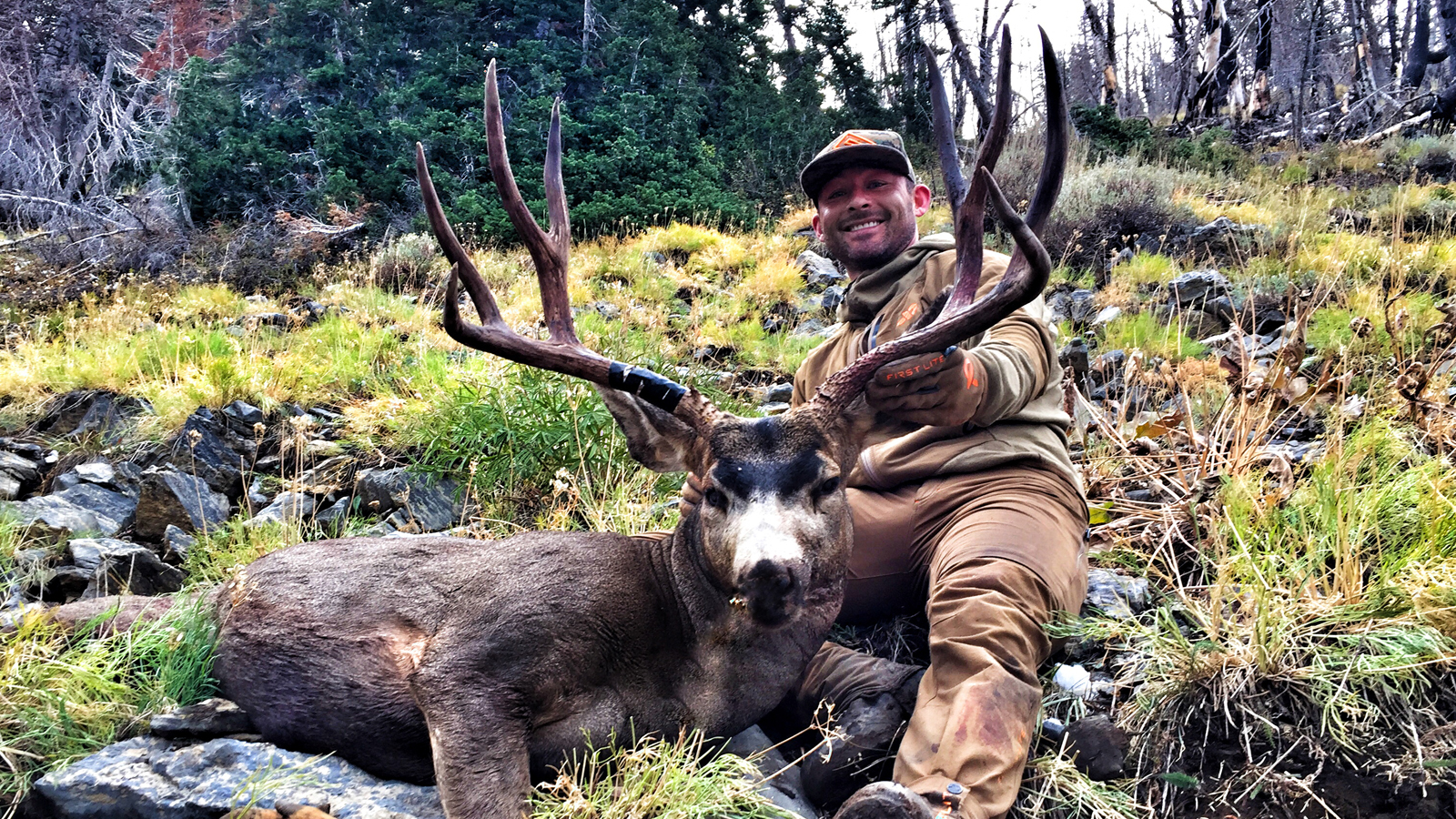 ZAC GRIFFITH MULE DEER